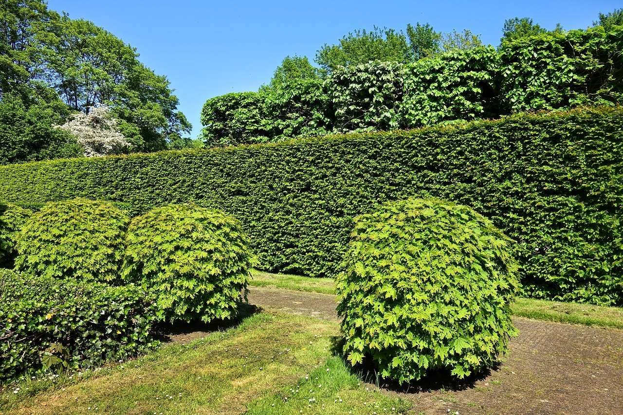 Needham MA Homes - Well-maintained bushes and trees help in improving the curb appeal of your Needham MA home.